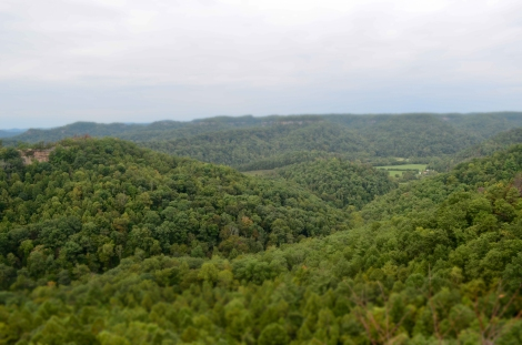 View of Kentucky hills from a scenic overlook in Red River Gorge, East-central, KY